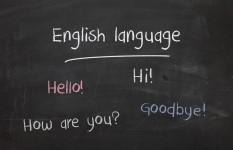 5 individualūs anglų kalbos užsiėmimai (po 60 min.)