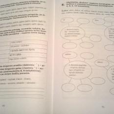 Lietuvių kalbos mokomoji priemonė 8 klasė. 3 dalis (mokiniams, besimokantiems pagal pritaikytas programas, su atsakymais)