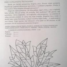 Banytė J., Vyšniauskienė V. Dalijamoji medžiaga grupiniam darbui II klasėje
