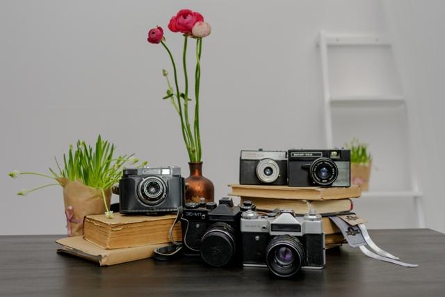 Senoviniai fotoaparatai (D-2)